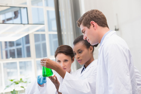 laboratory: Scientists analyzing beakers with chemical fluid in laboratory Stock Photo