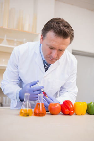 precipitate: Scientist injecting vegetables in the laboratory
