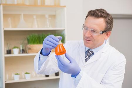 precipitate: Scientist examining precipitate in flask in the laboratory