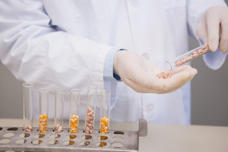 kernel: Scientist holding kernel in tube in the laboratory