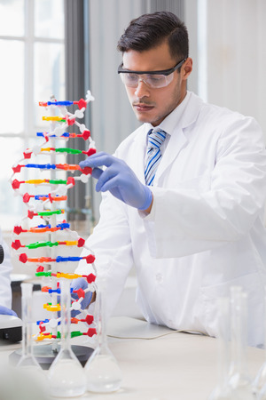 dna helix: Scientist analysing dna helix in the laboratory