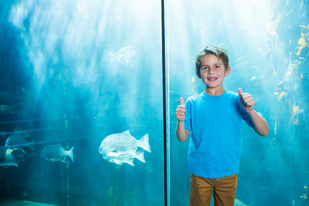 inquiring: Happy young boys rising his finger in front of a tank at the aquarium Stock Photo