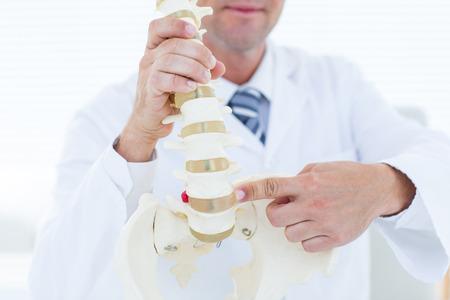 columna vertebral: Doctor que muestra la columna vertebral anatómica en la clínica Foto de archivo