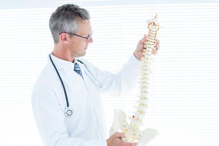 colonna vertebrale: Medico di controllo, della colonna vertebrale anatomica in studio medico
