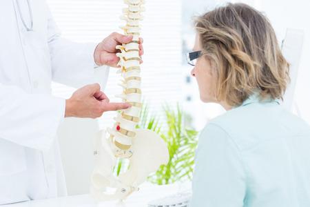 columna vertebral: Doctor que se�ala la columna vertebral anat�mica en el consultorio m�dico