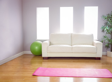 domicile: Exercise mat and ball at home in the living room