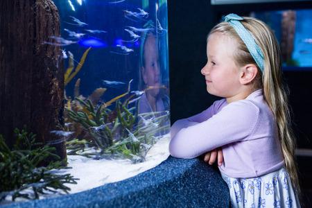 inquiring: Happy young woman looking at fish in a tank at the aquarium