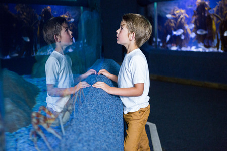 reflect: Young man looking at his reflect in an aquarium
