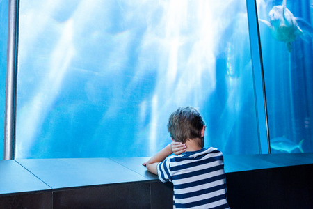 isolation tank: young man waiting in front of an aquarium at the aquarium