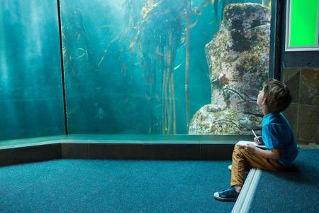 fishtank: Young man drawing a fish in a tank at the aquarium Stock Photo