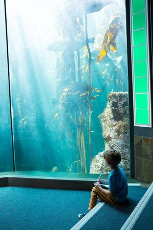 fishtank: Young man drawing a fish in a illuminate tank
