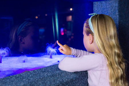 sea anemone: Young woman pointing a sea anemone in tank at the aquarium