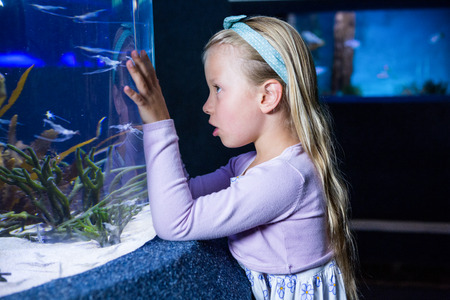 fishtank: Young woman looking at fish in tank at the aquarium