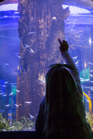 fishtank: Young women pointing fish behind the camera at the aquarium Stock Photo