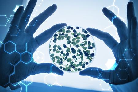 investigando: Ciencia gráfica contra investigador manos que sostienen brotes en placa de Petri
