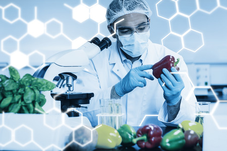 Science graphic against food scientist examining a pepper
