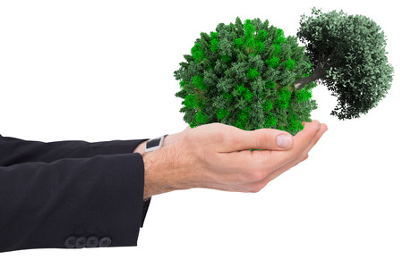 arms out: Businessman with arms out presenting something against tree with green leaves growing