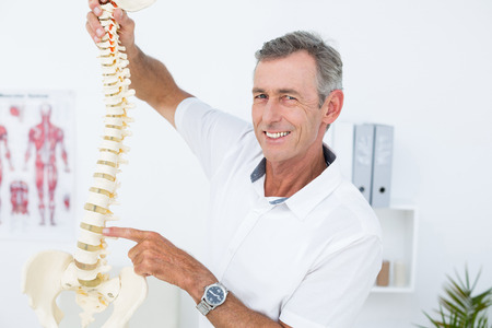 orthopedic: Smiling doctor showing anatomical spine in clinic