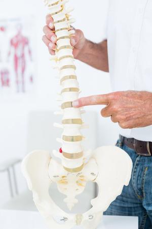 columna vertebral: Doctor que muestra la columna vertebral anat�mica en la cl�nica Foto de archivo