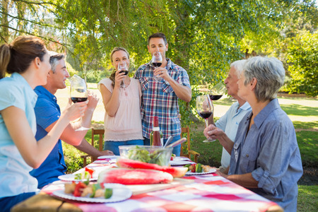 al fresco: Happy couple toasting with their family on a sunny day