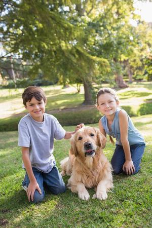 晴れた日に公園で彼らの犬を持つ兄弟