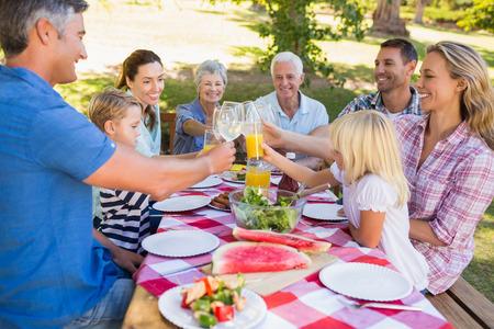 familia pic nic: Familia feliz que tiene comida campestre en el parque en un d�a soleado Foto de archivo