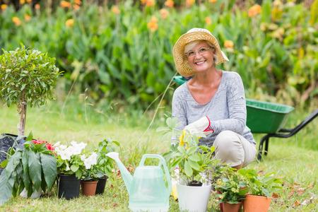 woman gardening: Happy grandmother gardening on a sunny day