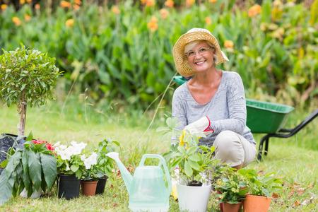 mujer arrodillada: Jardinería abuela feliz en un día soleado