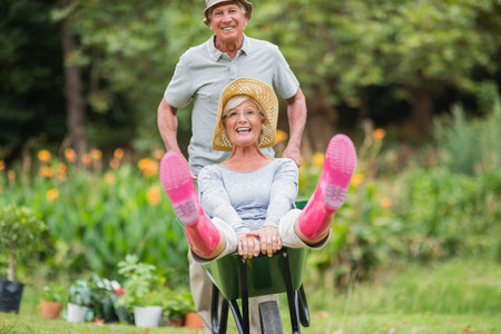 woman gardening: Happy senior couple playing with a wheelbarrow in a sunny day Stock Photo