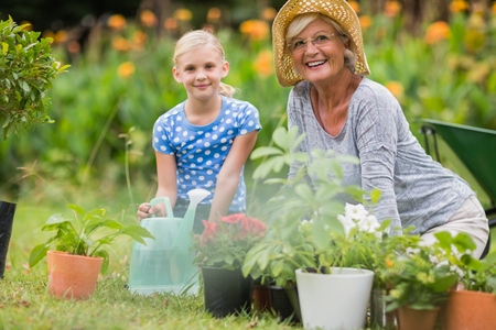family gardening: Happy grandmother with her granddaughter gardening on a sunny day