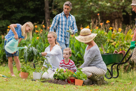 helping children: Happy family gardening on a sunny day