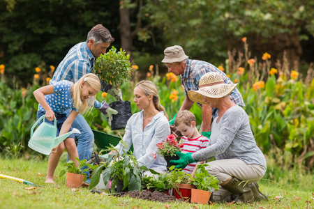 family gardening: Happy family gardening on a sunny day