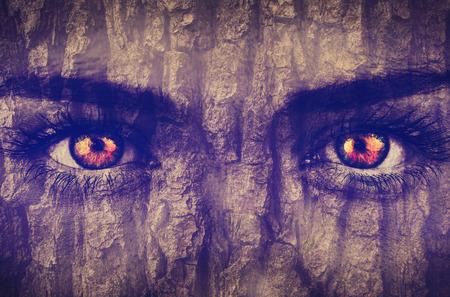 face in tree bark: Bark overlay on face
