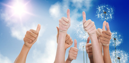 growing partnership: Hands up and thumbs raised against digitally generated dandelions against blue sky Stock Photo