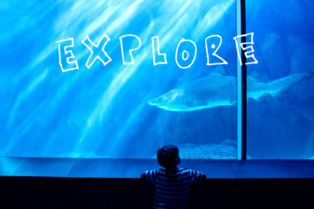 explore against young man looking at a shark in a tank