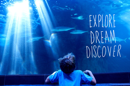 fishtank: explore, dream, discover against young man looking at fish in a tank