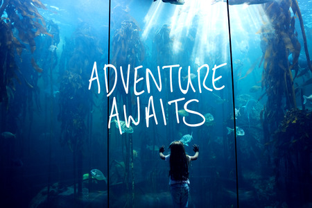 fish tank: adventure awaits against little girl looking at fish tank