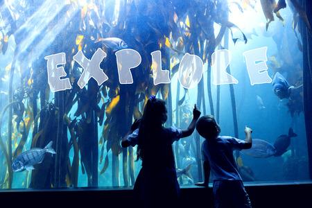 fish tank: explore against little siblings looking at fish tank