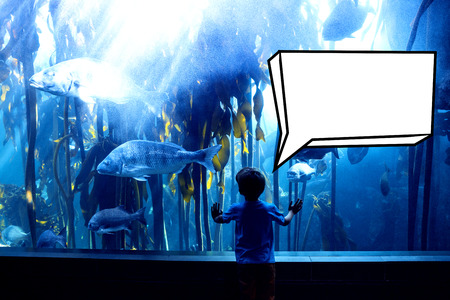 inquiring: Speech bubble against young man touching a tank with big fish Stock Photo