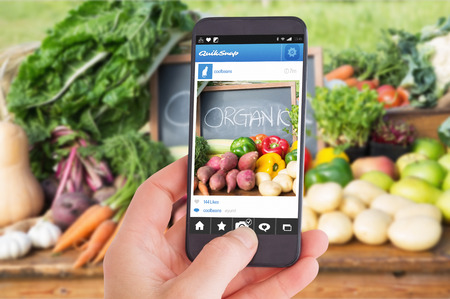 fresh produce: Female hand holding a smartphone against table of fresh produce at market Stock Photo