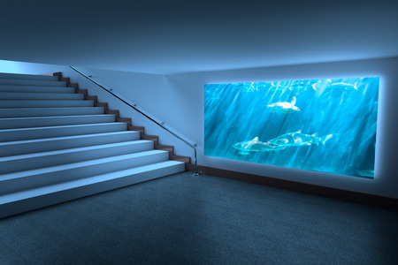 fishtank: Room with large display against turtle swimming in fish tank