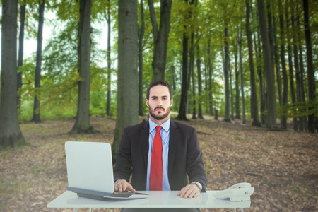 unsmiling: Unsmiling businessman sitting at desk  against tree trunks in the forest