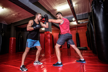 boxing: Two boxing men exercising together at the health club