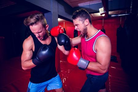 men exercising: Dos hombres de boxeo ejercicio juntos en el gimnasio Foto de archivo