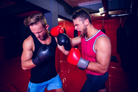 men exercising: Two boxing men exercising together at the health club