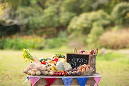 locally: Table with locally grown vegetables in the park Stock Photo