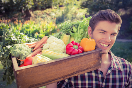young adult men: Handsome farmer with basket of veg on a sunny day