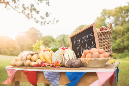 country living: Table with locally grown vegetables in the park Stock Photo