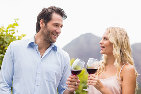 mid adult couple: Young happy couple smiling at each other in the grape fields