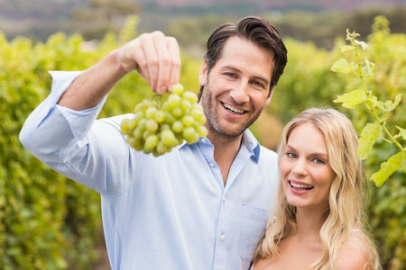 admiring: Young happy couple looking at grapes in the grape fields Stock Photo